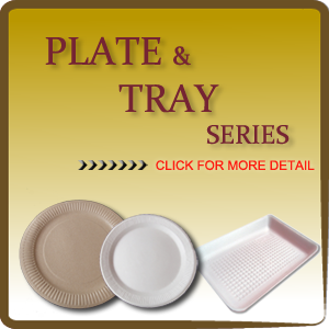 PLATE AND TRAY SERIES